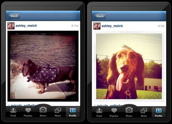 Facebook Completes The Deal To Acquire Instagram For 1 Billion Dollars