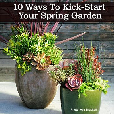 10 Ways To Kick Your Spring Garden Into Gear