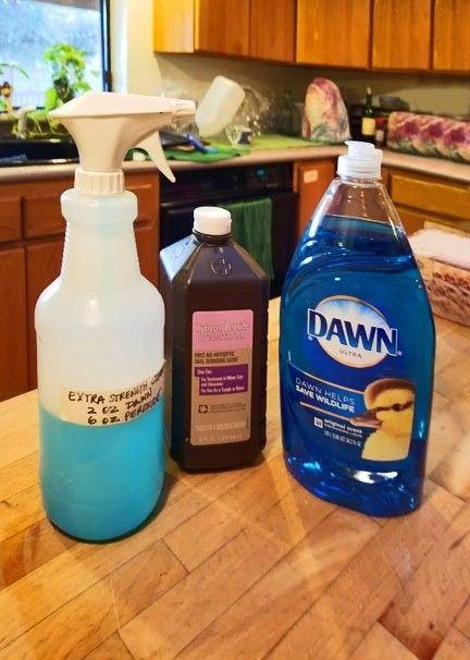 Carpet Cleaner 2 Oz Dawn Dish Detergent 6 Oz 3 Hydrogen Peroxide Spray On Stain Scrub F Diy Carpet Cleaner Carpet Cleaner Solution Stain Remover Carpet