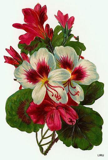 Vintage Flowers Scrap ~ LAMINAS... Y TRABAJOS CON FLORES (pág. 184) | Aprender manualidades es facilisimo.com: