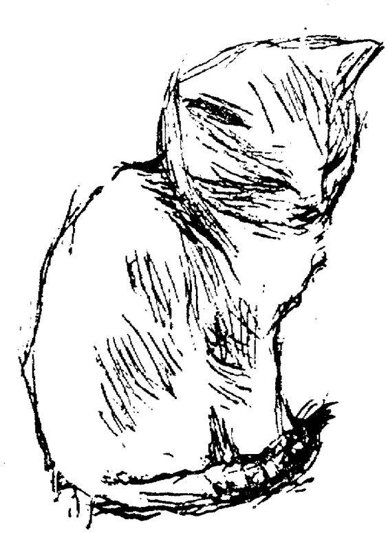 gatos desenho - Pesquisa Google
