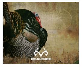 Realtree hunting wallpaper realtree turkey mobile for Realtree game and fish forecast