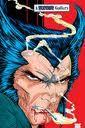 Todd McFarlane- Wolverine