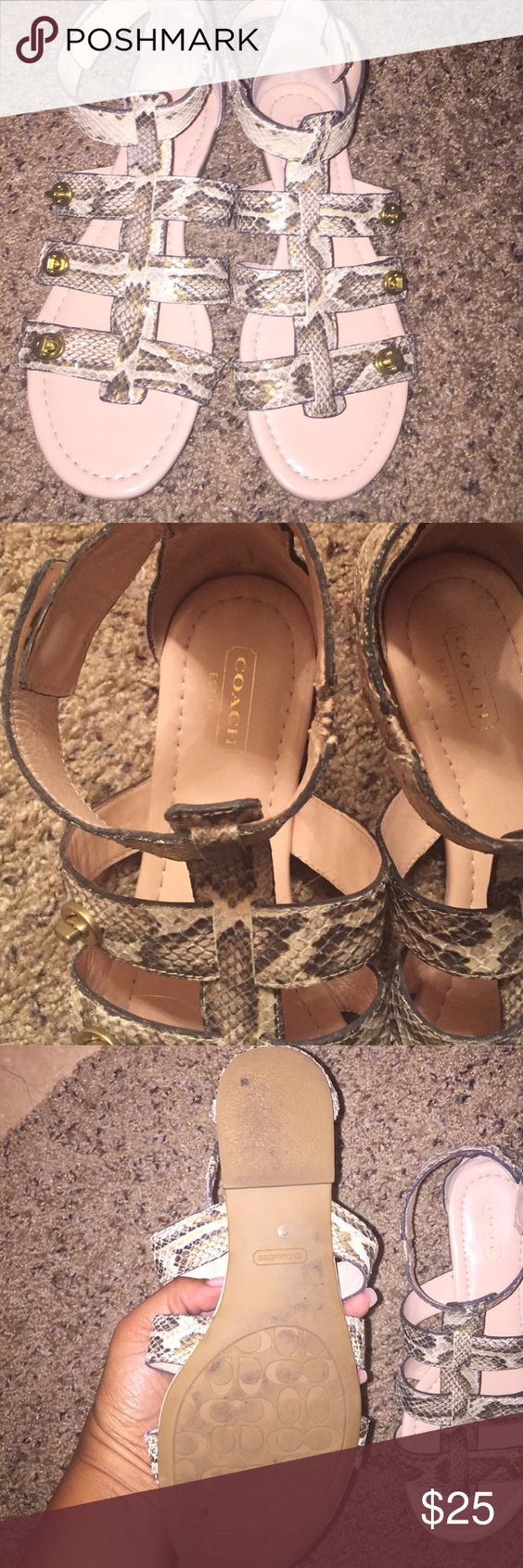 Coach sandals Snake print leather Coach sandals. Great condition Coach Shoes Sandals