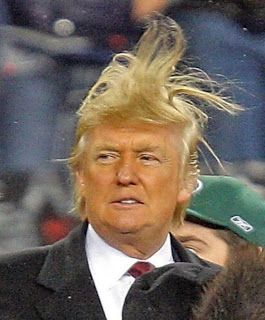 Image result for trump's magic hair
