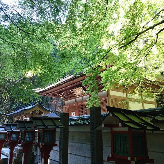いざ、あなたの知らない京都へ!京都おすすめ観光スポットランキングTOP40 49枚目の画像