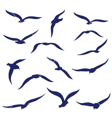 Seagull silhouettes vector 1275822 - by aslantopcu08 on VectorStock®
