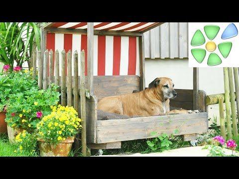 Selbermachen Video Hundefreisitz Hunde Liegeplatz Selbst Gemacht Hundehuette Der Anderen Art Mit Sonnenschutz Hundehutte Hunde Garten Hundekorbchen