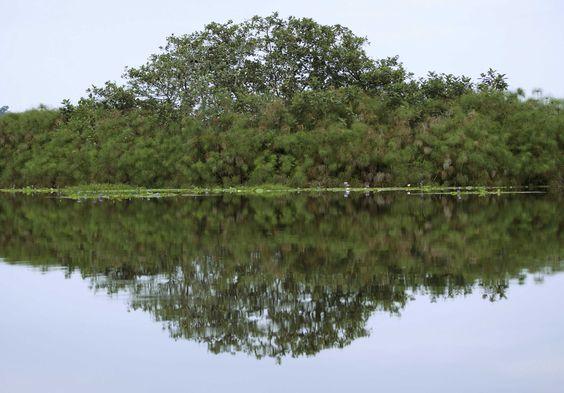 Uganda Reisen – Naturschutzprojekt auf den Musambwa Inseln