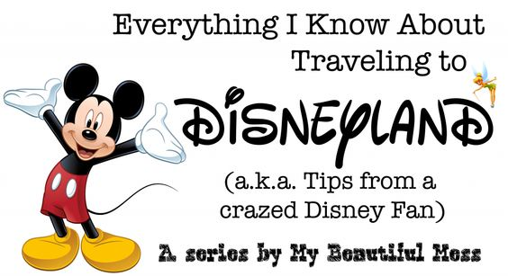 Five best special experiences at Disneyland - Travel Series