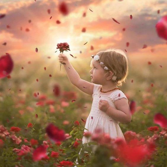 """""""Se houver luz em seu coração, encontrarás o caminho de casa."""" Rumi"""