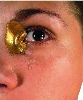 Lauren Kalman - hard wear 2006 - gold Duct: