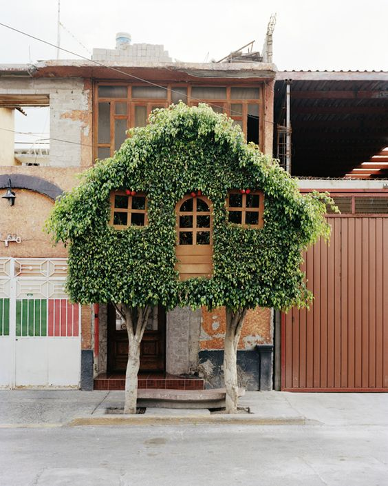 "Photographer Erwan Frichou ""worked with gardeners to create interesting shapes and invited people in the street to climb those peculiar topiary trees"""