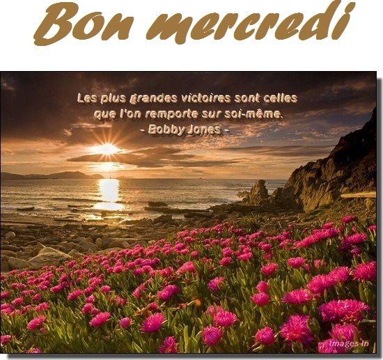 Citation Du Jour Citation Quote Of The Day Et Jour J