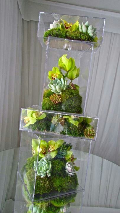 plastic boxes of succulents, moss etc. Something can then be placed on top