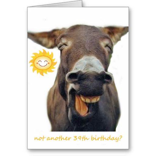 Donkey spoofs 39th birthday cards Donkey Pinterest – Donkey Birthday Card