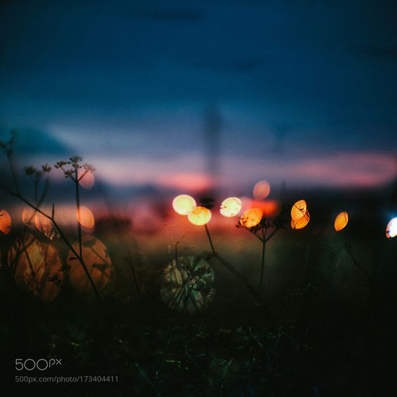 Sunset from an urban Field by ClaudioCastelliKurageart. @go4fotos