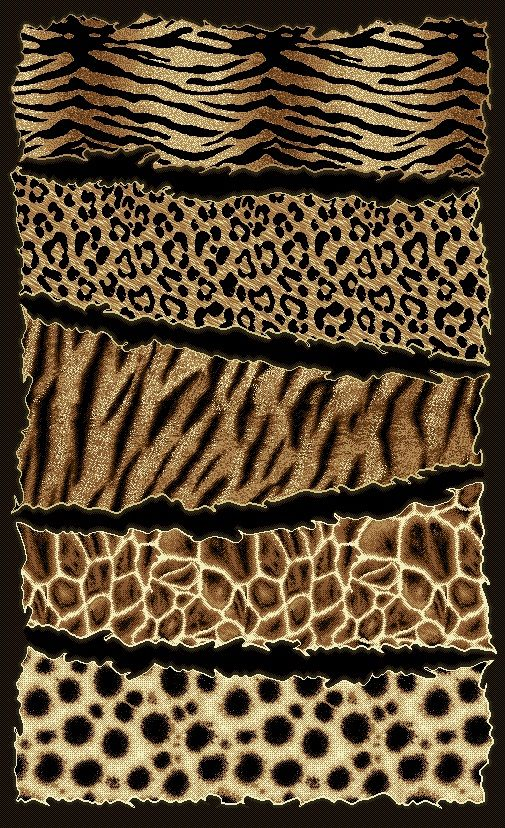 Animal Print Background Mixed Animal Print Backgrounds