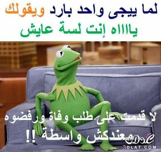 مضحكه اجمل الصور المضحكه مضحكه 2019 3dlat Net 01 17 4fe0 Funny Picture Jokes Funny Study Quotes Funny Qoutes