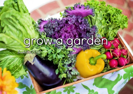 grow a garden || Bucket List 2017: