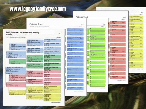 The FamilyRoots Organizer Color-Coding System: An example of a coloured Pedigree Chart using the Legacy Program.