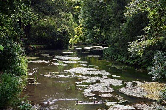 Río Coln en Bibury en los Cotswolds de Inglaterra: