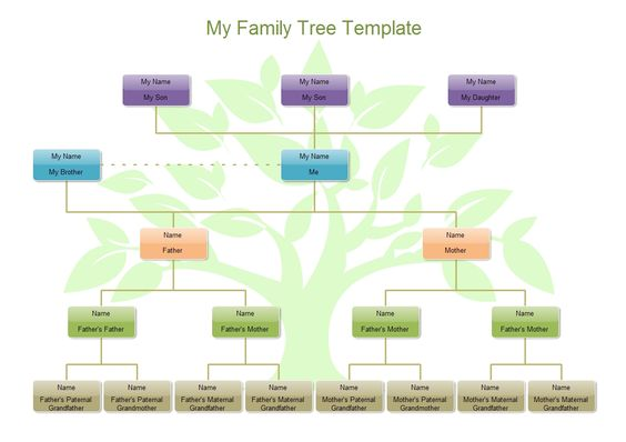 family tree template poster free early years amp primary teaching - tree diagram template