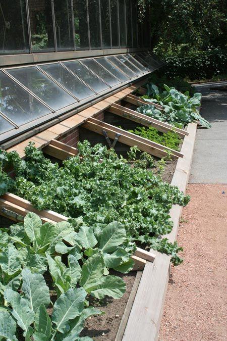 cold frames urban farming gardening pinterest cold. Black Bedroom Furniture Sets. Home Design Ideas