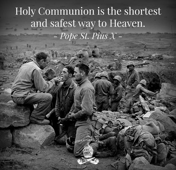 St Pius X - Holy Communion: Christian Catholic, Quotes The Catholic, Catholic Thing, Catholic Gentleman, Quotes From Saints, Catholic Saint, Catholic Quotes, Catholic Faith, Saint Quotes