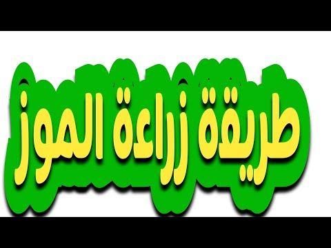طريقة زراعة الموز في المنزل الجزء الأول Youtube Gaming Logos Nintendo Wii Logo Logos