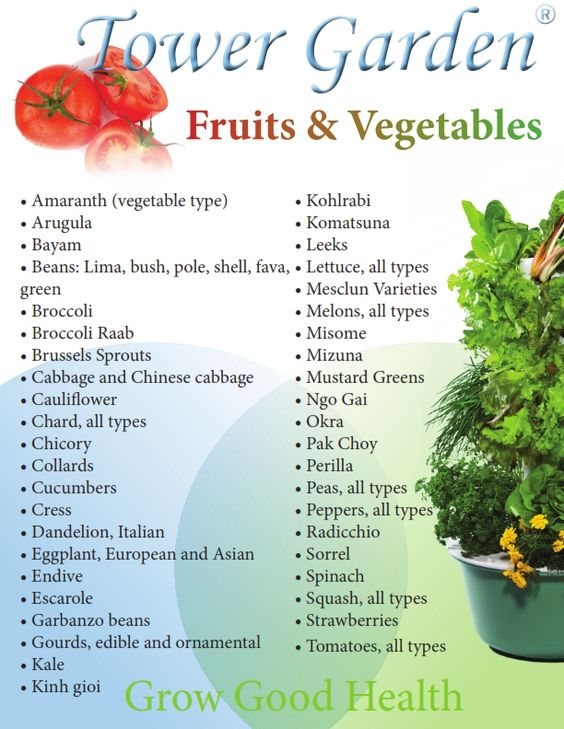 Check out the list of fruits and vegetables that you can grow in your tower garden what are you - Checklist for your vegetable garden in august ...