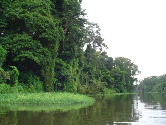 Panama. El rio Chagres.. Llegando al Poblado de los Indios Embera.