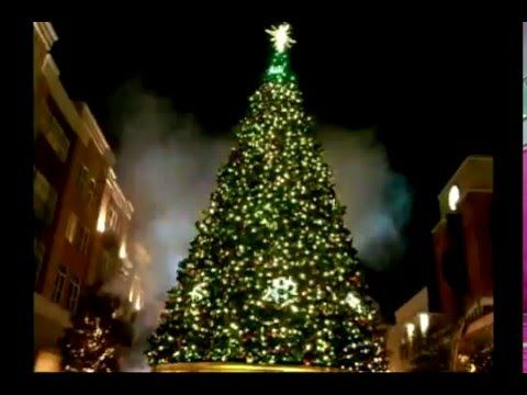 Commercial Holiday Decorations Outdoor Commercial Christmas Tree Decor Accessori Amazing Christmas Trees Cool Christmas Trees Commercial Christmas Decorations