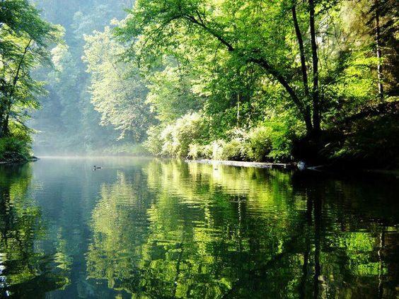 la pace di un fiume verde non ha eguali