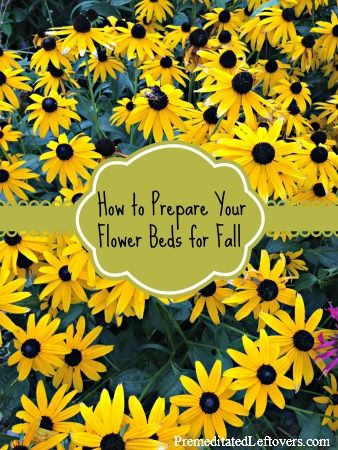 How to prepare your flower beds in the fall for next - How to prepare garden for winter ...