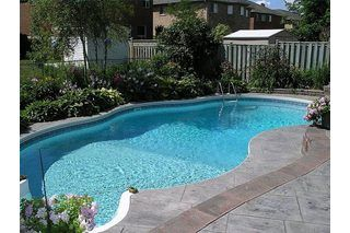 The best plants for around a swimming pool the o 39 jays Best plants for swimming pool landscaping