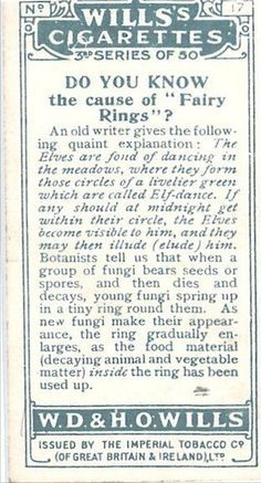 What causes Fairy Rings, from an antique cigarette trading card.