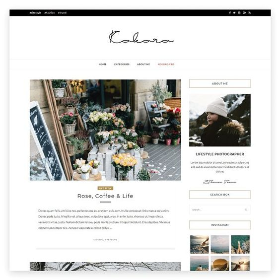 Favorites for WordPress.org collection curated by SOYVIRGO on Creative Market.