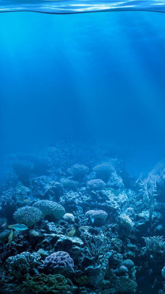 Under Water Iphone Wallpaper Underwater Iphonewallpaper Iphone Wallpaper Water Water Under The Sea Background