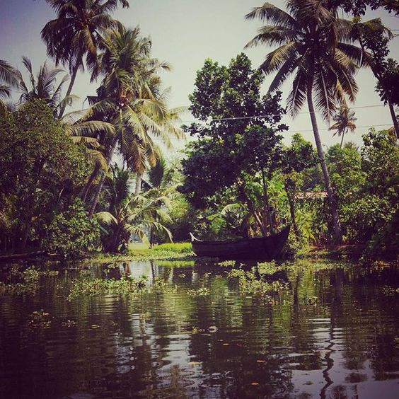 #backwaters #backwatersofkerala #greenintheblood #greenundertheskin #nature #wildgreens #wildnature #peace #boat #Kerala #india #greenporn