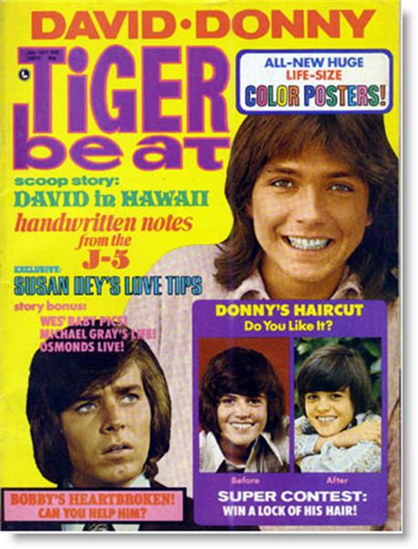 OK…We did not have Bieber Fever- BUT ohhhh David Cassidy…Donnie Osmond and Bobby sherman!