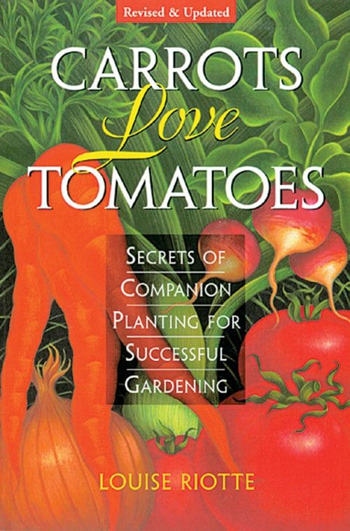 7778857861804ce2ee57aeb70fbde87d - Secrets Of Companion Planting For Successful Gardening