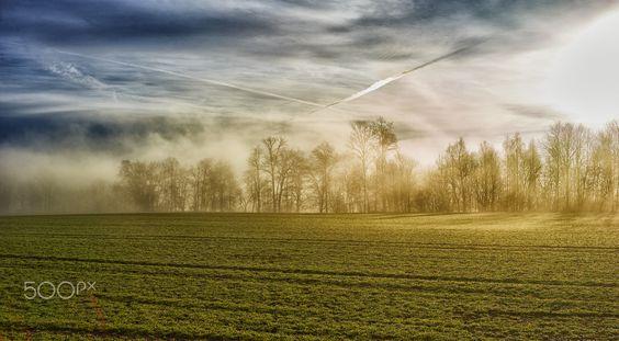 nebel - null
