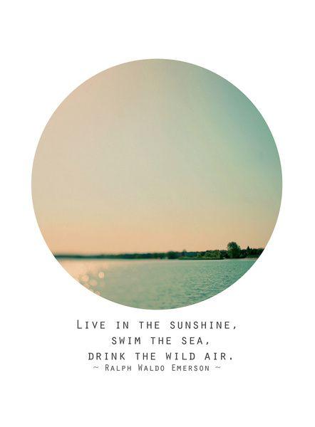 Swim The Sea Art Print