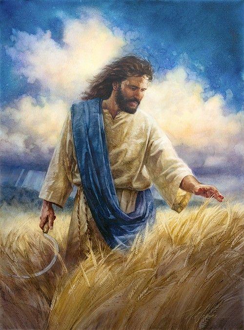 Nathan Greene - Reaping The Harvest Watercolor Giclee   Jesus art, Jesus painting, Biblical art