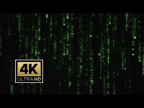 Matrix Screensaver Rain Code Longest 4k Video On Youtube Screen Savers Youtube Videos New Matrix