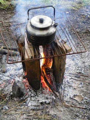 Swedish log fire-- and different kinds of FIREs.