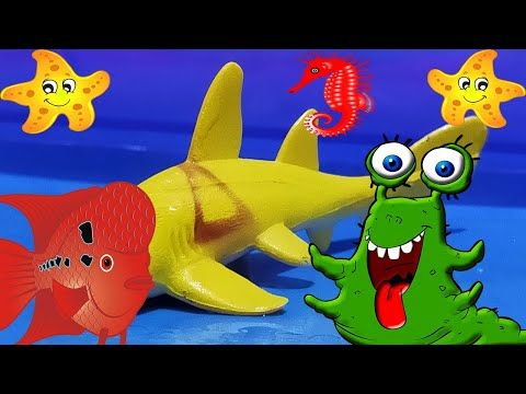 Playtime4kids Learn Wild And Sea Animal Names Animals For Kids Animals For Kids Computer Games For Kids Free Childrens Games