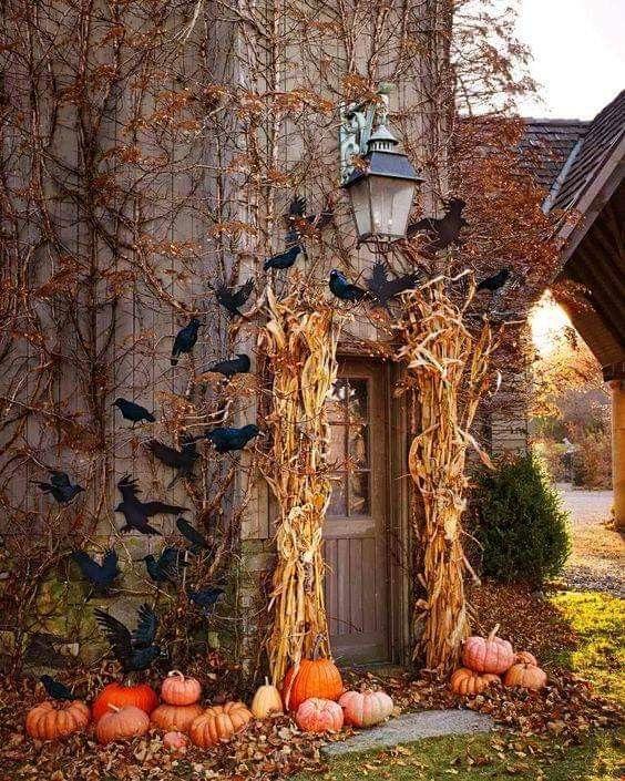 Pin By Debbie Cravens Gessaman On Halloween Fall Halloween