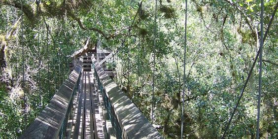Exploring Florida: 5 Attractions You Haven't Heard Of